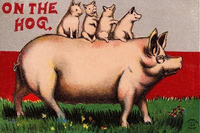 On the Hog Postcard--Giclee Print