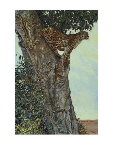 On the Lookout-Kalon Baughan-Art Print