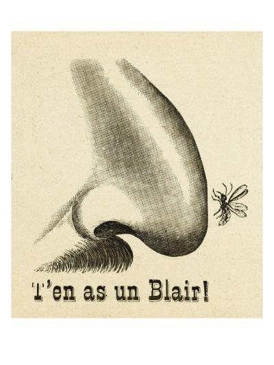 On the Nose! - a Mosquito Hits the Jackpot When Encountering a Fine Hooter--Giclee Print