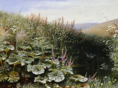 On the Riverbank-Robert Collinson-Giclee Print
