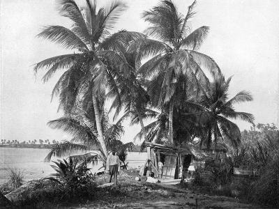 On the Road to Blue Hole, Port Antonio, Jamaica, C1905-Adolphe & Son Duperly-Giclee Print