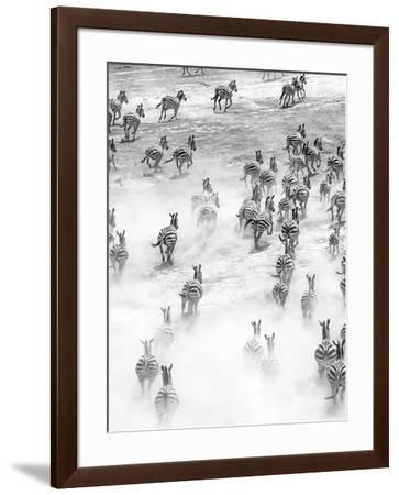 On the Run in Tanzania-Art Wolfe-Framed Photographic Print