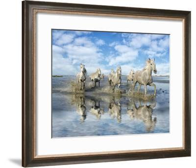 On the Run--Framed Giclee Print