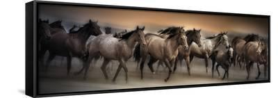 Oncoming Storm-Bobbie Goodrich-Framed Canvas Print