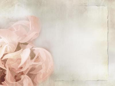 Flower Background in Light Vintage Style on Torn Old Paper Sheet