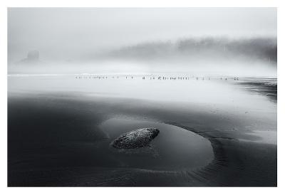 One Morning-Dani Bs^-Giclee Print