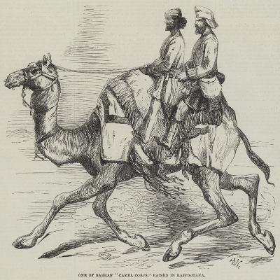 One of Barras' Camel Corps, Raised in Rajpootana-Harrison William Weir-Giclee Print
