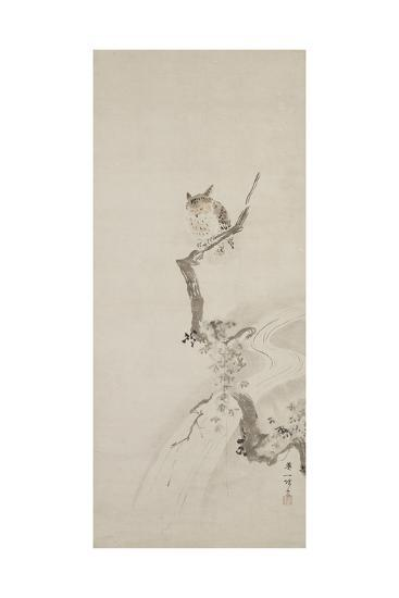 One Owl Perched in a Tree, C. 1710-Hanabusa Itcho-Giclee Print