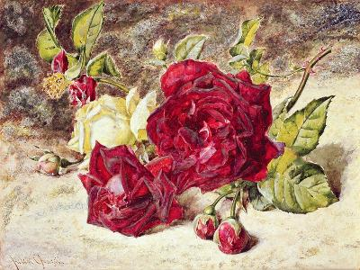 One White and Two Red Roses and Buds-Helen Cordelia Coleman Angell-Giclee Print