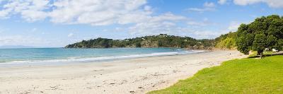Oneroa Beach, Waiheke Island, Auckland, North Island, New Zealand, Pacific-Matthew Williams-Ellis-Photographic Print