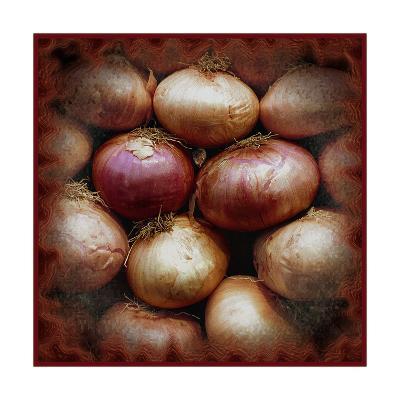 Onions-Harold Silverman-Giclee Print