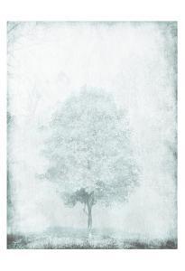 Snow Tree by OnRei
