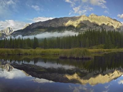 Opal Range, Kananaskis Country, Alberta, Canada-Tim Fitzharris-Photographic Print
