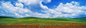 Open Field, Hill, Clouds, Blue Sky, Tuscany, Italy