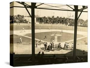 Opening Day of Spring Training for the New York Giants at Miami Field, 1946