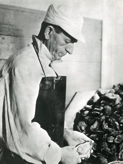 Opening Oysters 1930s--Photographic Print