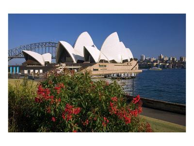 Opera House, Sydney, New South Wales, Australia--Art Print