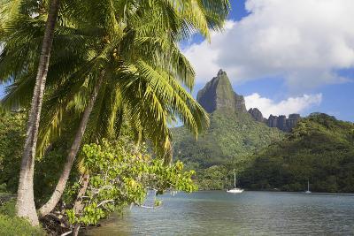 Opunohu Bay, Mo'Orea, Society Islands, French Polynesia-Ian Trower-Photographic Print