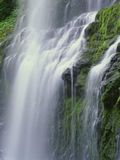 OR, Willamette NF. Three Sisters Wilderness, Lower Proxy Falls displays multiple cascades-John Barger-Photographic Print