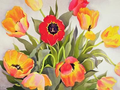 https://imgc.artprintimages.com/img/print/orange-and-red-tulips_u-l-pjcb910.jpg?p=0