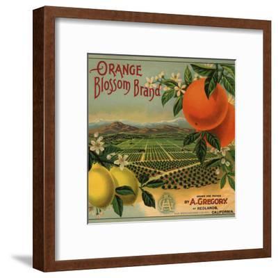 Orange Blossom Brand - Redlands, California - Citrus Crate Label-Lantern Press-Framed Art Print