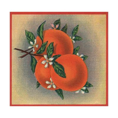 Orange Branch - Citrus Crate Label-Lantern Press-Art Print