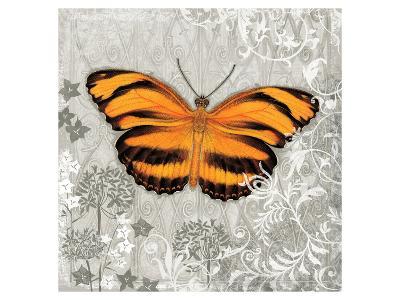 Orange Butterfly-Alan Hopfensperger-Art Print