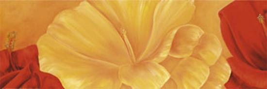 Orange Flower-Erik De Andr?-Art Print
