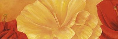 https://imgc.artprintimages.com/img/print/orange-flower_u-l-f13mbu0.jpg?p=0