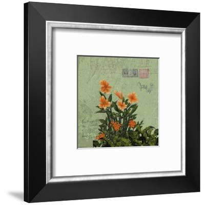 Orange Flowers-Rick Novak-Framed Art Print