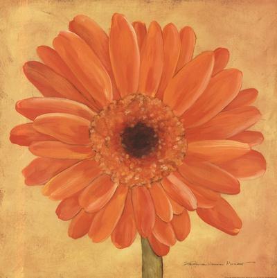 https://imgc.artprintimages.com/img/print/orange-gerber_u-l-f8usdj0.jpg?p=0