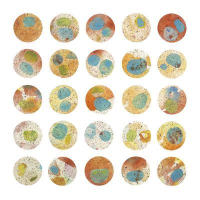 Orange & Green Circles-Kate Endle-Premium Giclee Print