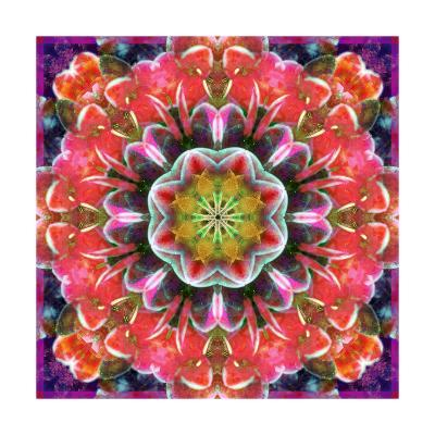 Orange Orchid Mandala-Alaya Gadeh-Art Print
