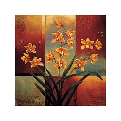 Orange Orchid-Jill Deveraux-Giclee Print