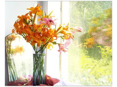 Orange Reflection-Judy Stalus-Art Print