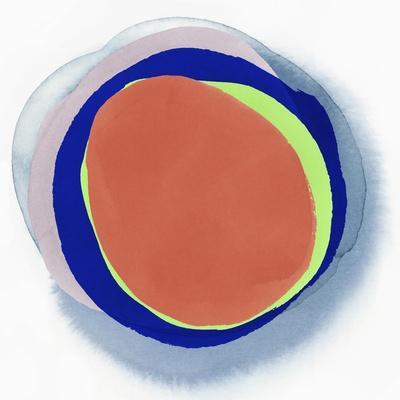 Orange Ringlet Art Print Pi Studio Art Com
