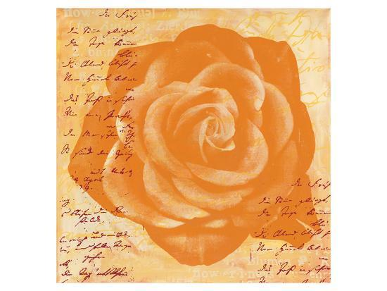 Orange Rose-Anna Flores-Premium Giclee Print