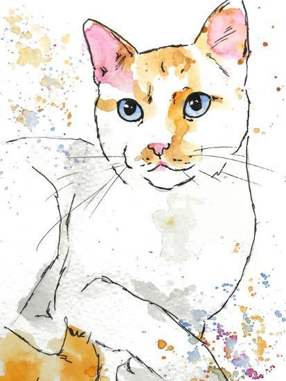 Orange Siamese-Allison Gray-Art Print