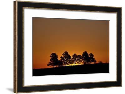 Orange Sky at Dawn, Custer State Park, South Dakota, United States of America, North America-James Hager-Framed Photographic Print