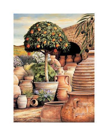 https://imgc.artprintimages.com/img/print/orange-topiary_u-l-f7m2a80.jpg?p=0
