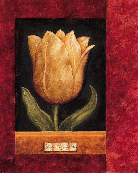 Orange Tulip-Herve Libaud-Art Print