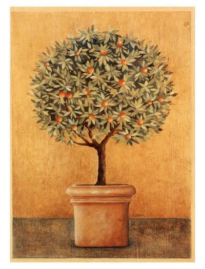 Oranger I-Laurence David-Art Print