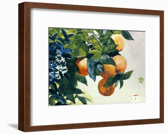 Oranges on a Branch, 1885-Winslow Homer-Framed Giclee Print