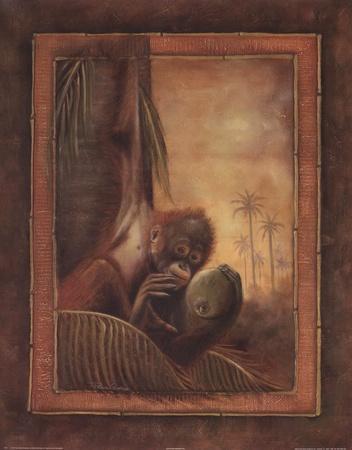 https://imgc.artprintimages.com/img/print/orangutan-i_u-l-f8u7u30.jpg?p=0