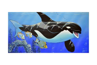 Orca Baby-Apollo-Giclee Print