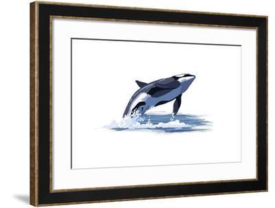 Orca Whale - Icon-Lantern Press-Framed Art Print