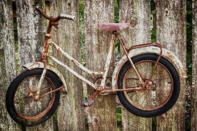 Orcas Island, Old Bicycle Hanging on Fence-Mark Williford-Photographic Print