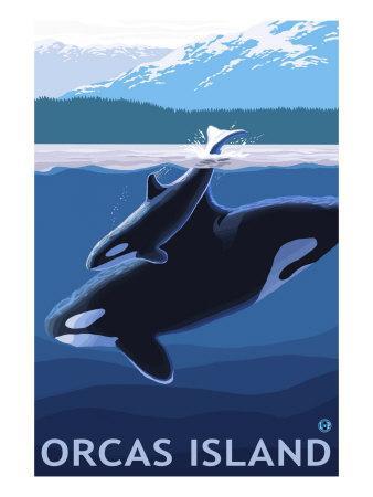 https://imgc.artprintimages.com/img/print/orcas-island-washington-orca-and-calf_u-l-q1gof2v0.jpg?p=0