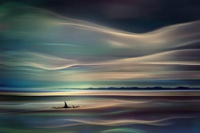 Orcas-Ursula Abresch-Photographic Print