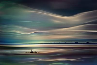 https://imgc.artprintimages.com/img/print/orcas_u-l-pn9vyp0.jpg?p=0